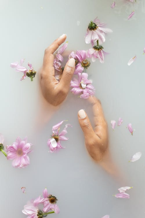 From above of anonymous female with manicure touching delicate petals of pink flowers in soap water