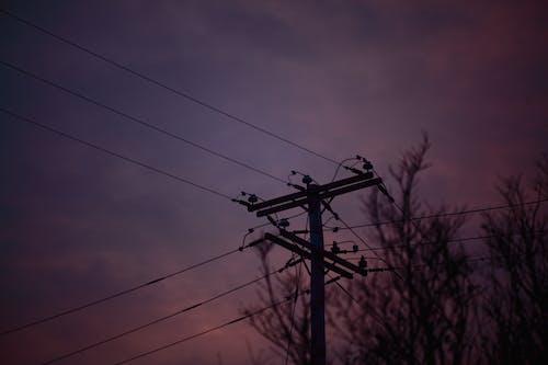 Free stock photo of dark, dark aesthetic, dark background