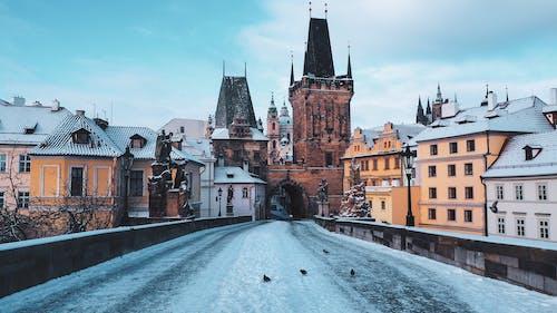 冬季, 哥德式, 城堡 的 免费素材图片