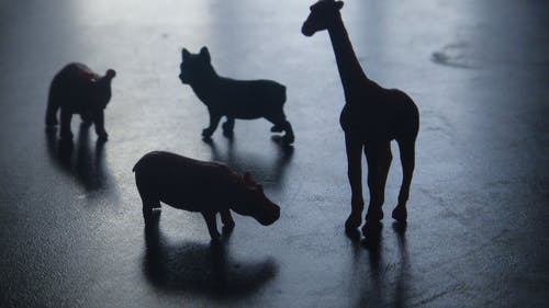 Silhouette of Four Animals