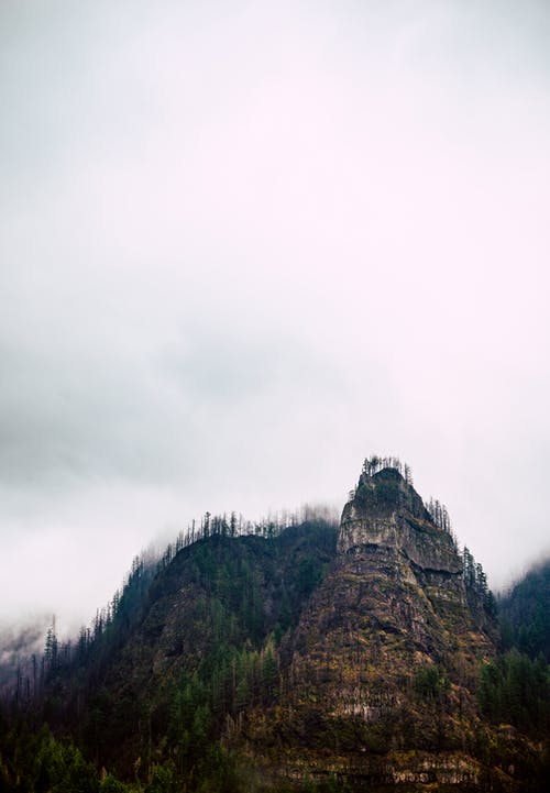Picturesque scenery of green coniferous treed growing on slope of huge rocky mountain against cloudy sky
