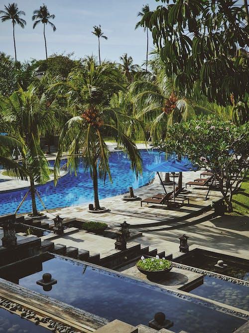 Безкоштовне стокове фото на тему «архітектура, балкон, басейн»