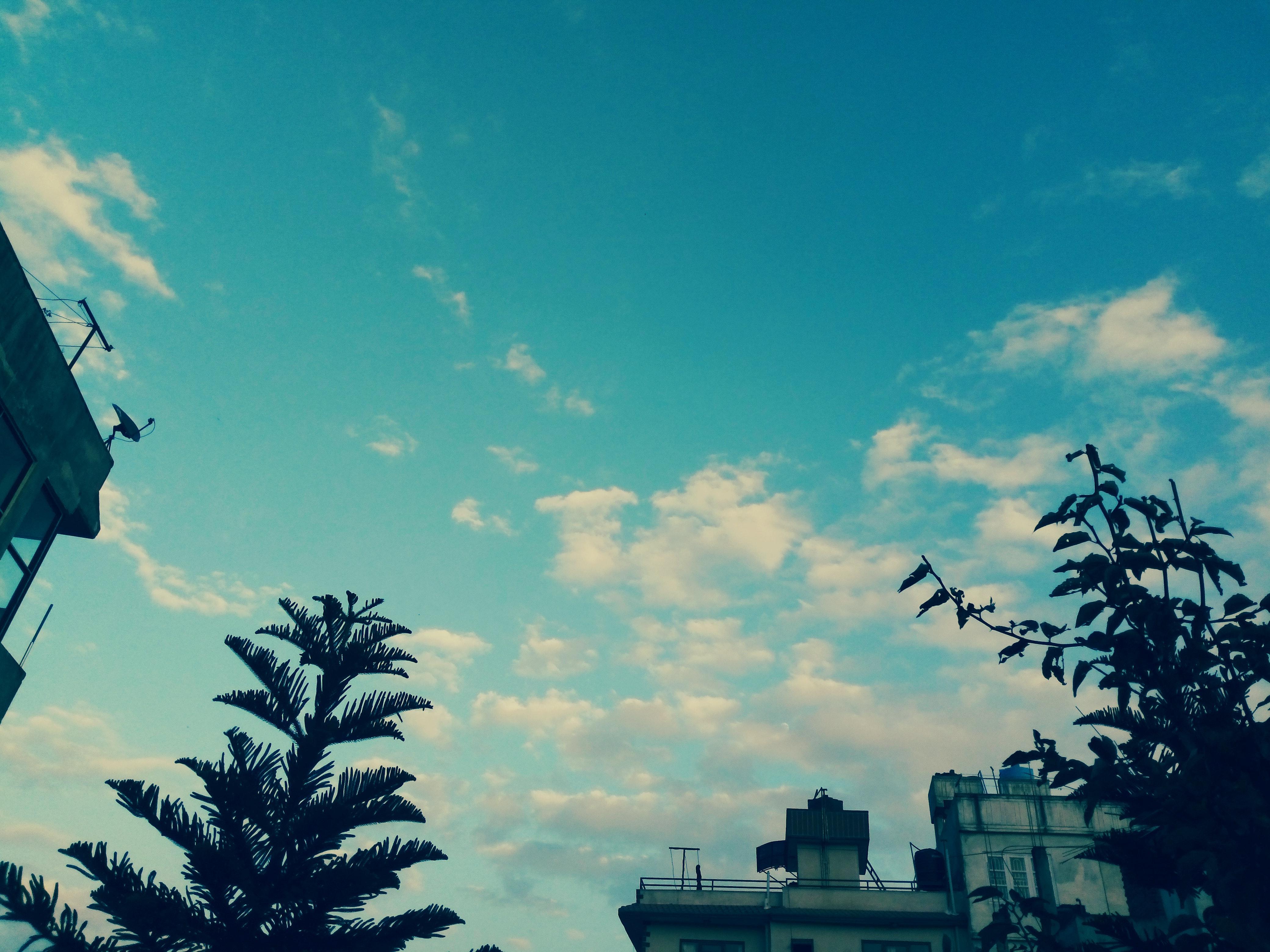 Foto Stok Gratis Tentang Langit Biru, Wallpaper HD