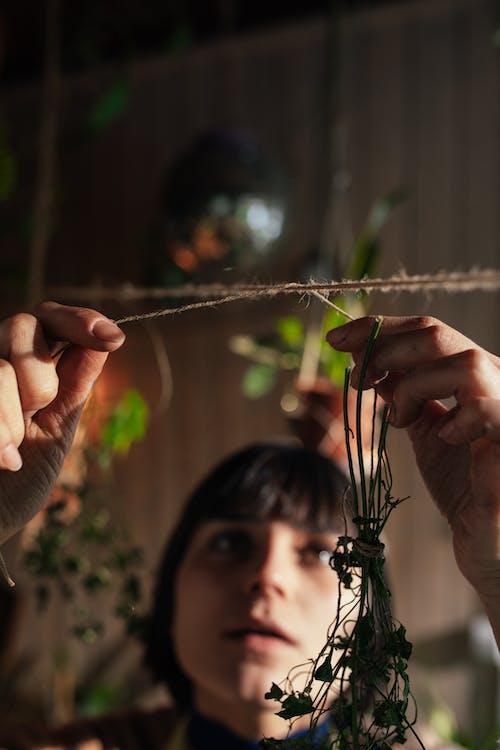 Foto profissional grátis de à base de plantas, adulto, alimento, amor