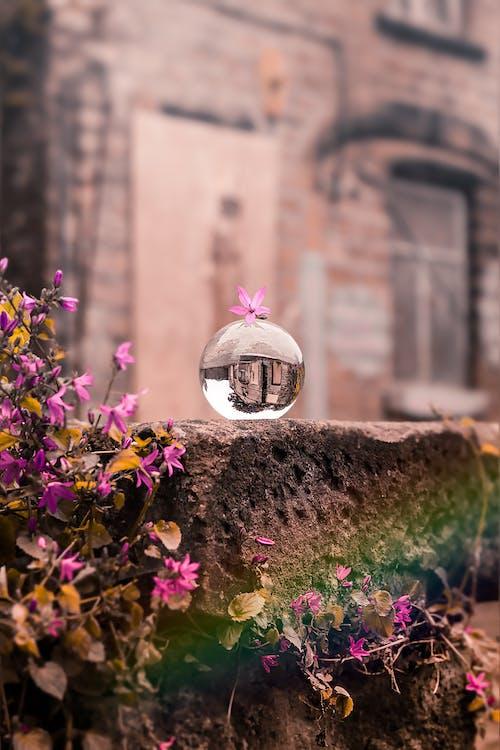 Základová fotografie zdarma na téma Adobe Photoshop, Anglie, architektura