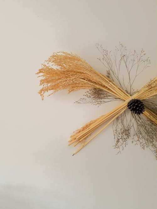 Decorative bouquet of cereal grass and dry branches with cone attached on white background