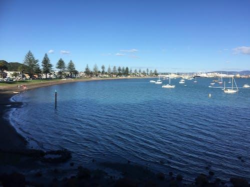 Free stock photo of bay, beach, coast, yachts