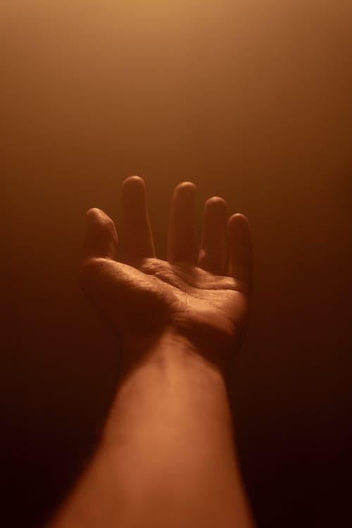 Ảnh lưu trữ miễn phí về ánh sáng, cầu nguyện, chân