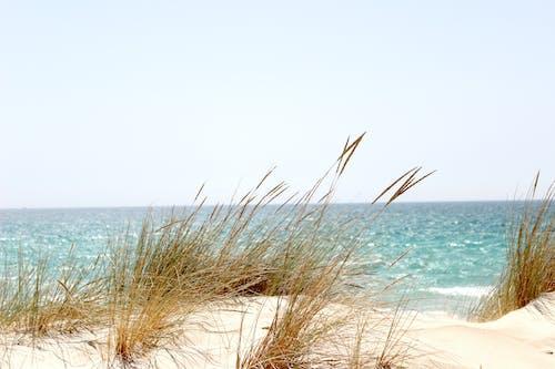 Photos gratuites de aube, bord de mer, ciel, côte