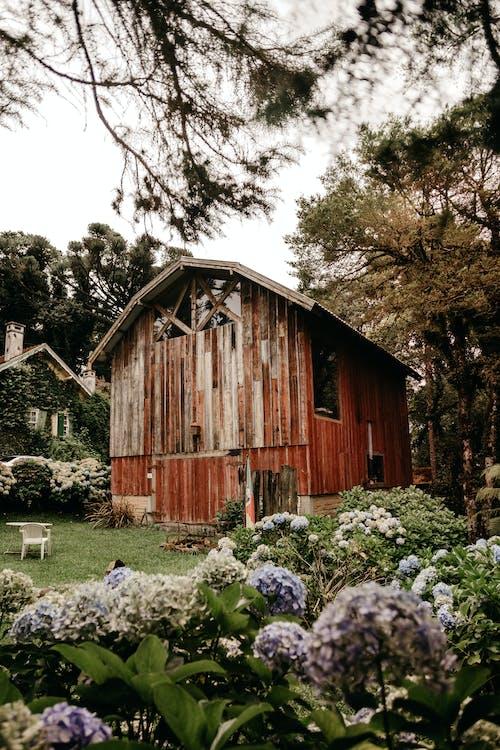 Small shabby wooden hut in village park