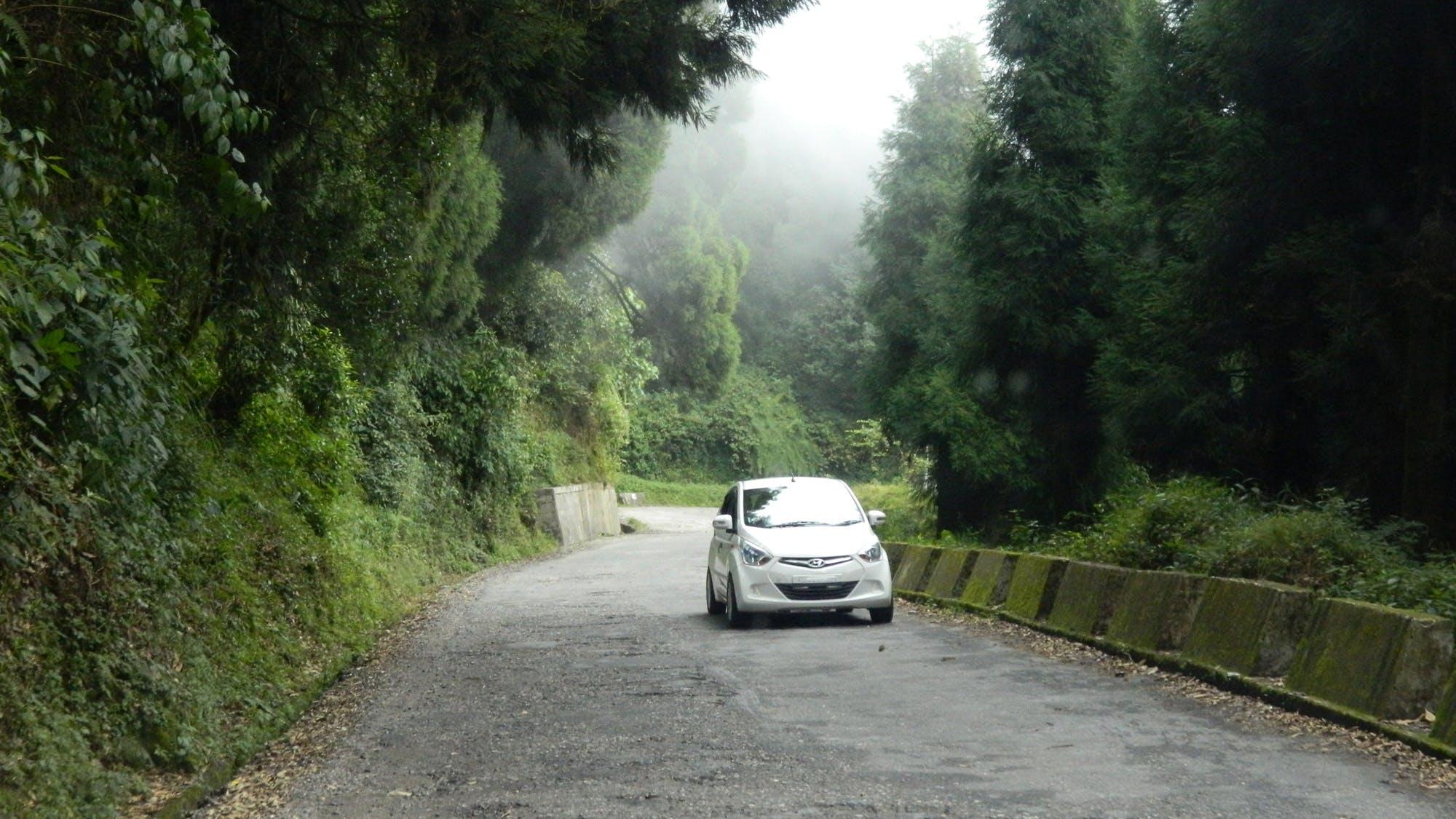 auto, mlha, silnice