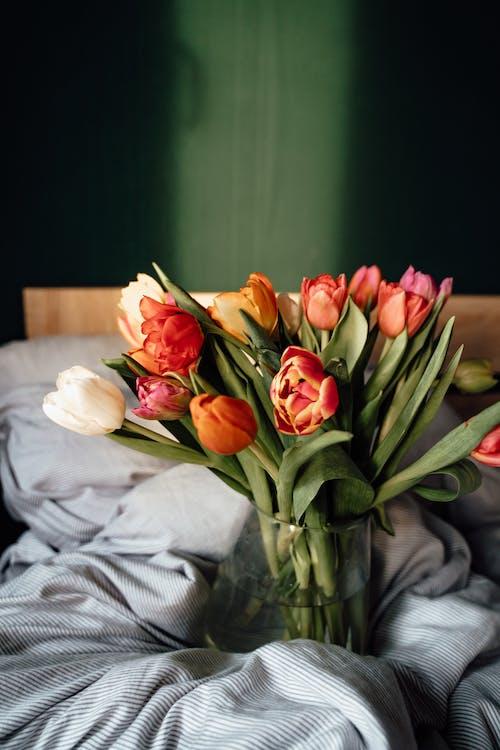 Darmowe zdjęcie z galerii z biały, bukiet, bukiet kwiatów