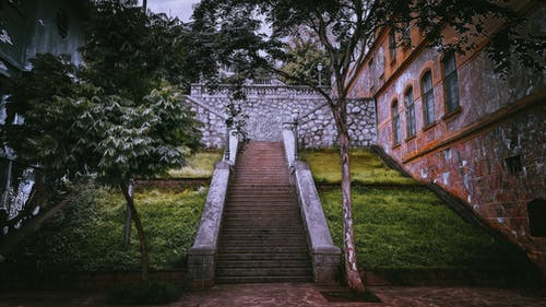 Old stone steps in city park