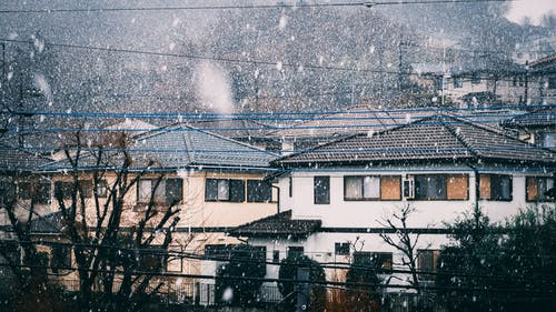 Facade of small houses and buildings in snowy city street near leafless trees in winter day
