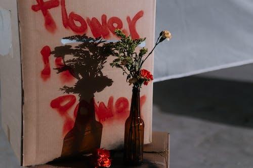 Placard Behind A Vase