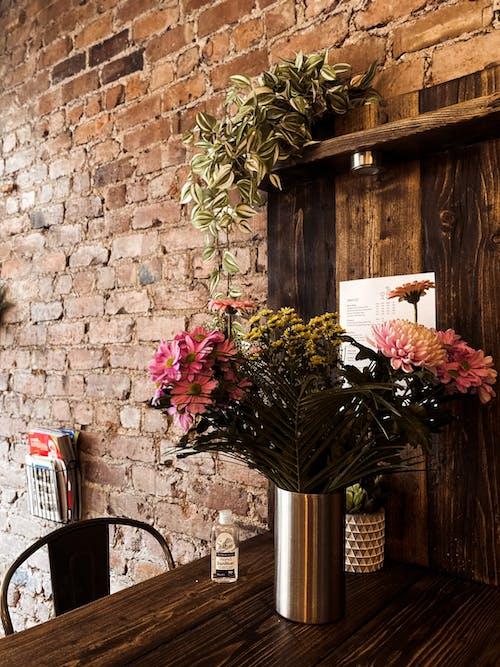 Безкоштовне стокове фото на тему «аромат, ароматичний, ботаніка»