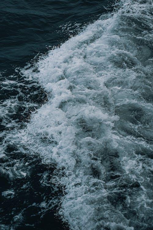 Immagine gratuita di acqua, bianco e nero, onde