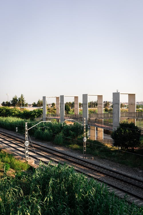 From above of railway tracks running between lush green plants under cloudless sky