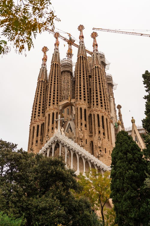 Tall medieval gothic basilica with spires located against cloudless sky on street of Spain city with green trees in Barcelona