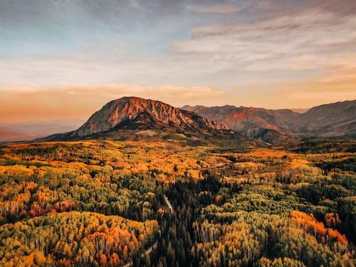 Free stock photo of autumn color, barbaric, colorado