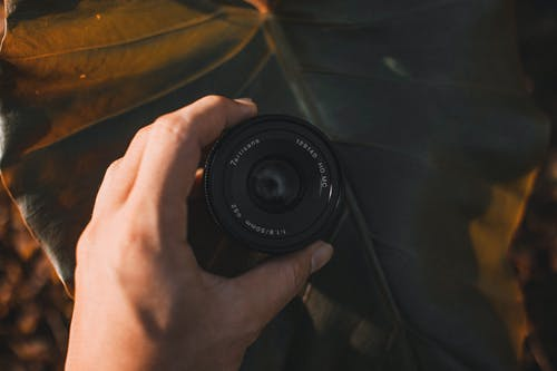 Top view of crop anonymous man with professional photo camera lens over large plant leaf outdoors