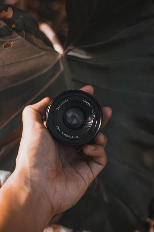 Faceless photographer showing photo camera lens against leaf