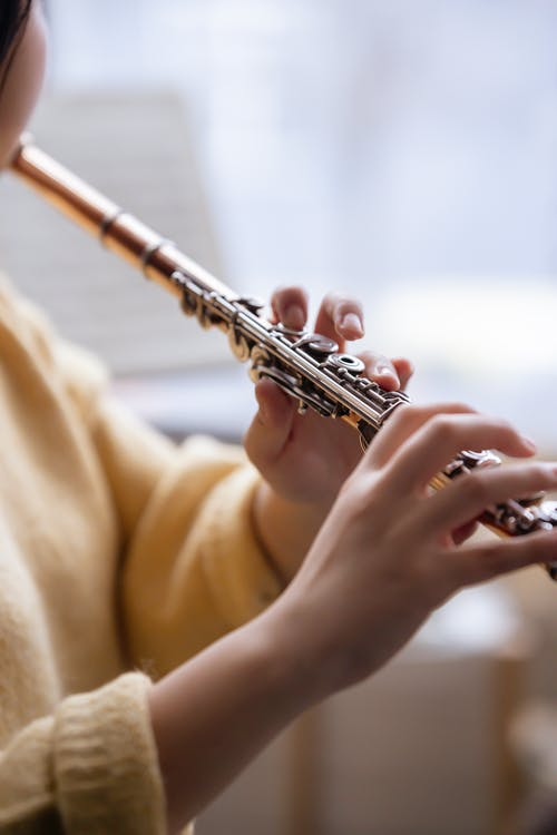 Anonymous lady playing flute in room