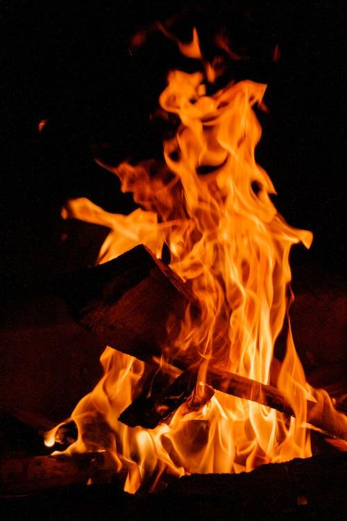 Imagine de stoc gratuită din ardere, atrăgător, caniculă