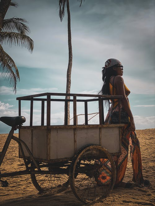 Free stock photo of adult, beach, cart