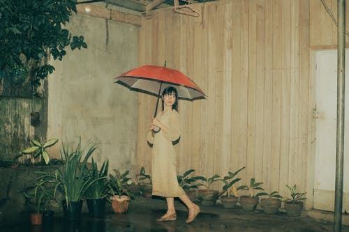 Asian female with umbrella near potted plants and building facade