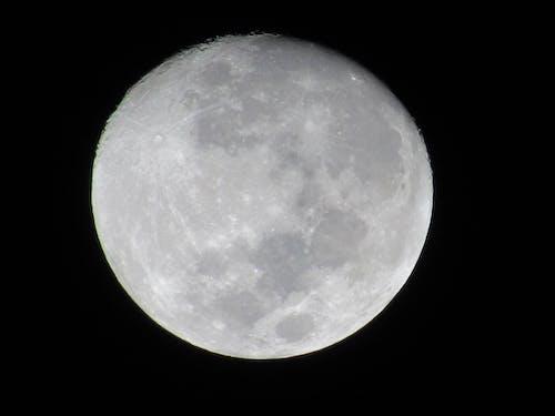 下弦の月, 惑星, 月, 空の無料の写真素材