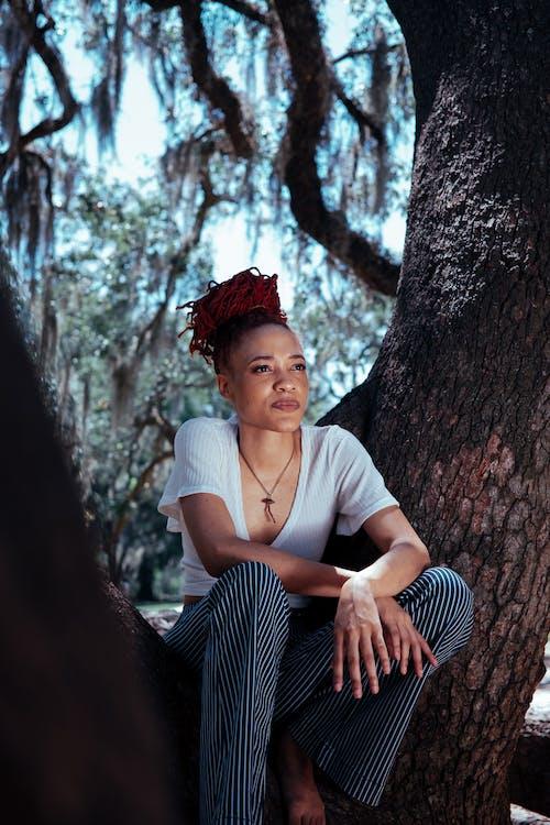 Ilmainen kuvapankkikuva tunnisteilla afroamerikkalainen, aikuinen, asento