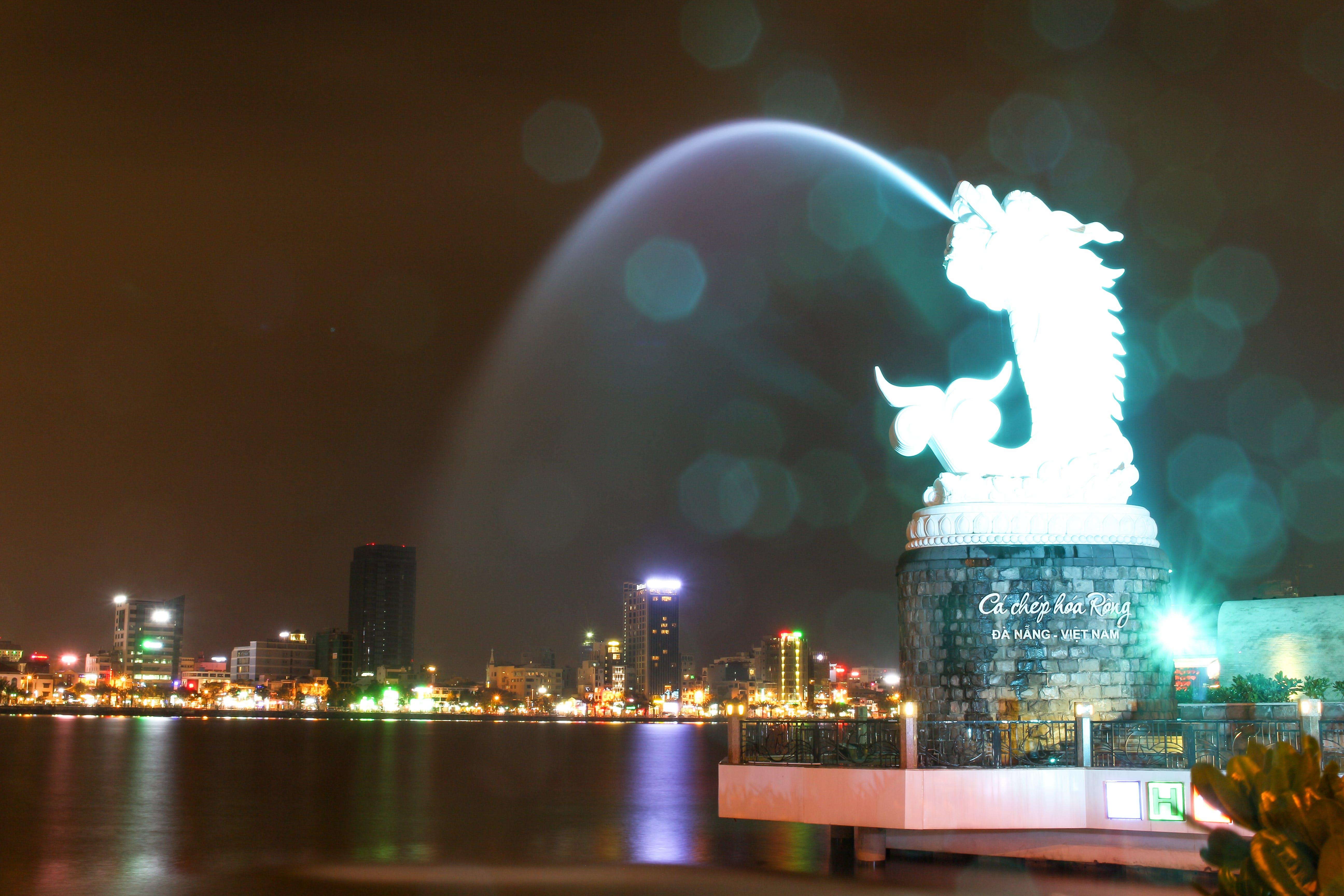 Free stock photo of carp dragon, dragon, life, night