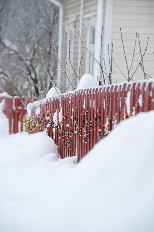 Kostnadsfri bild av finland, kall, lampor