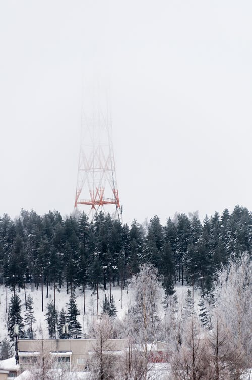Red Tower Surrounded by Trees Covered With Snow