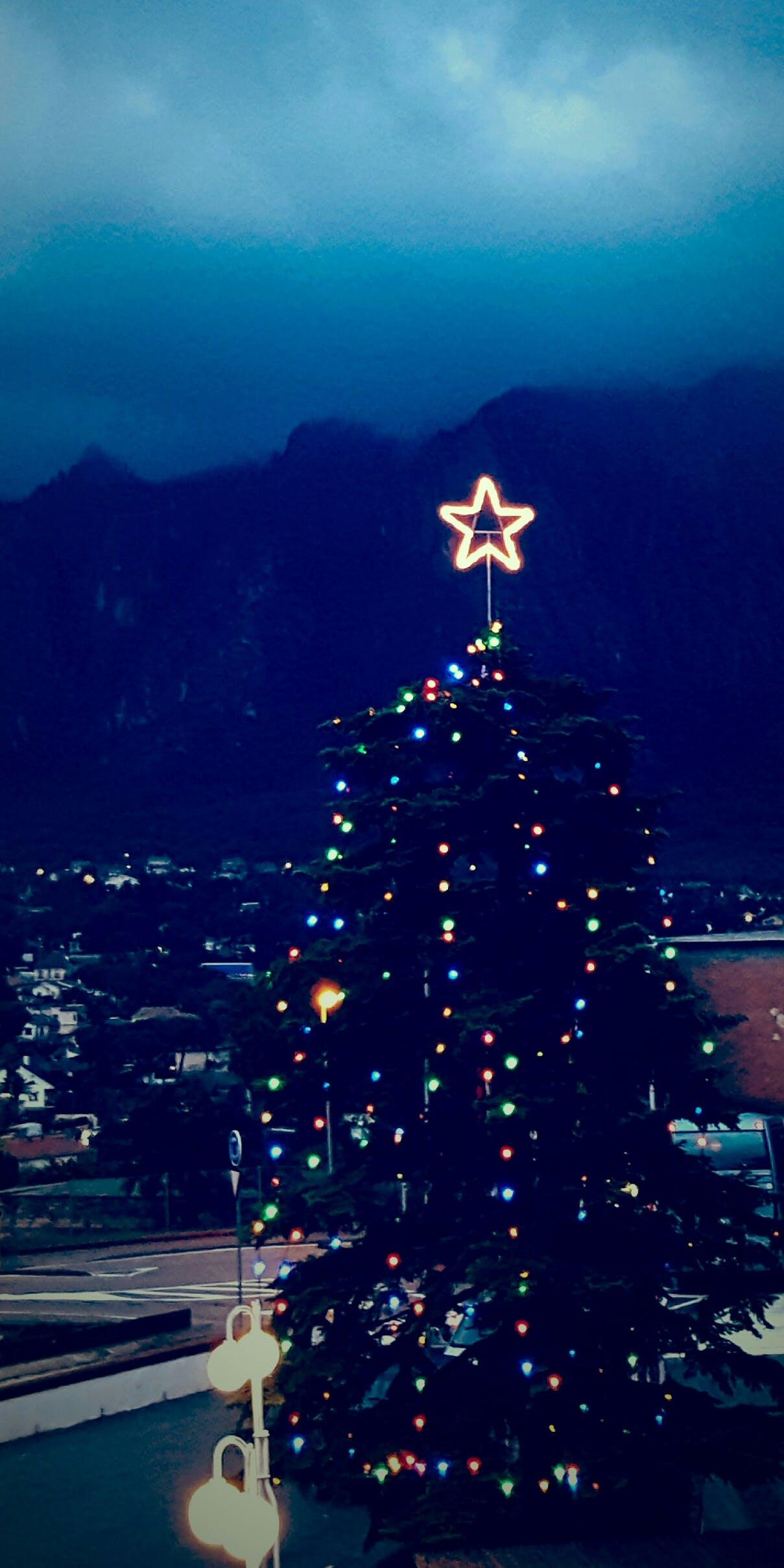 Christmas Tree during Nightime