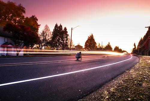 Imagine de stoc gratuită din aparat de fotografiat, apus, arbori, asfalt