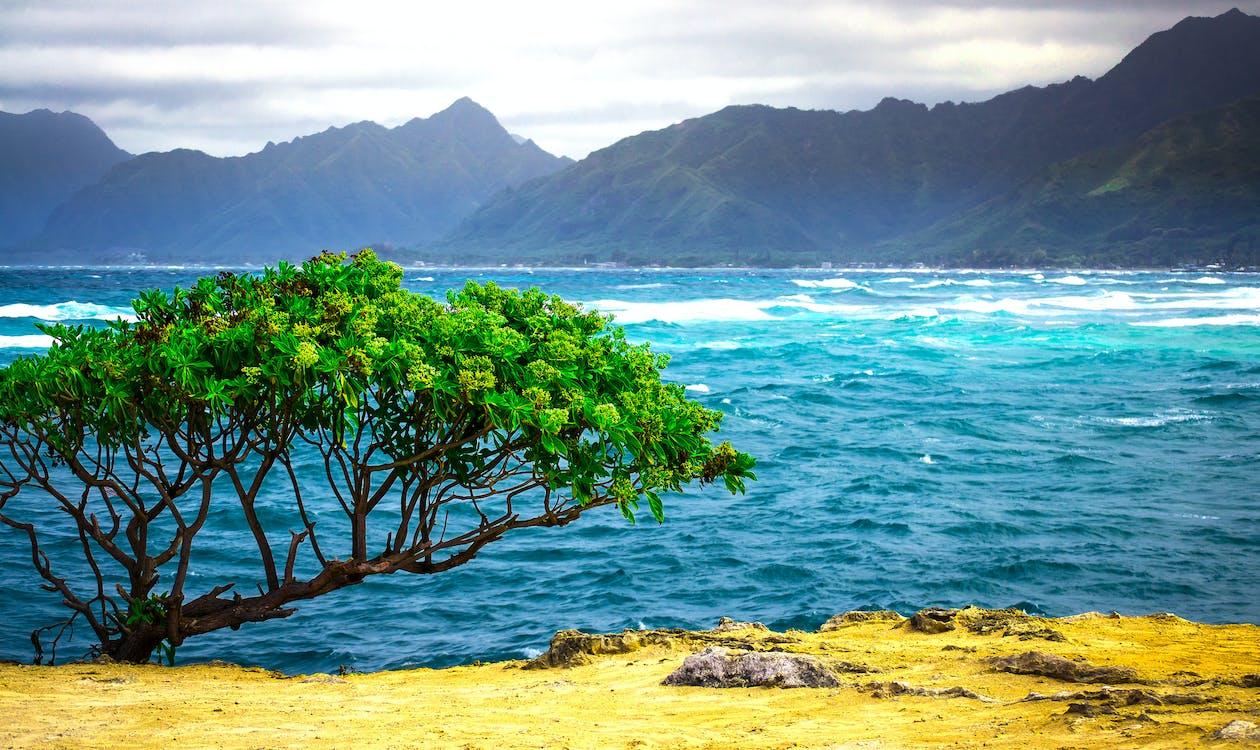 hawaii landscape nature ocean pexels alert 4k background missile wallpapers patheos backgrounds alarm panic sparks false photographer wallpaperaccess