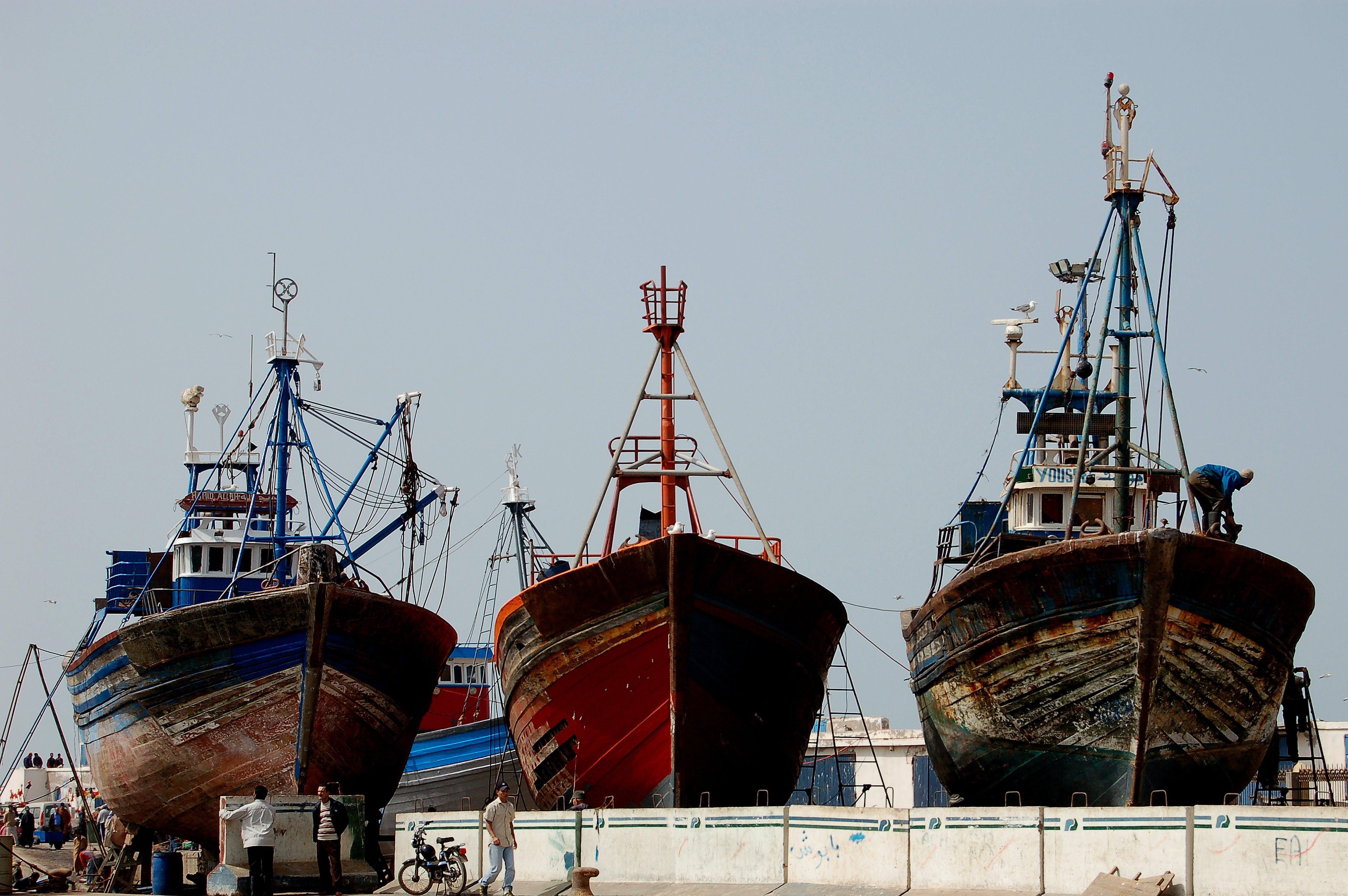 Základová fotografie zdarma na téma člun, trawler