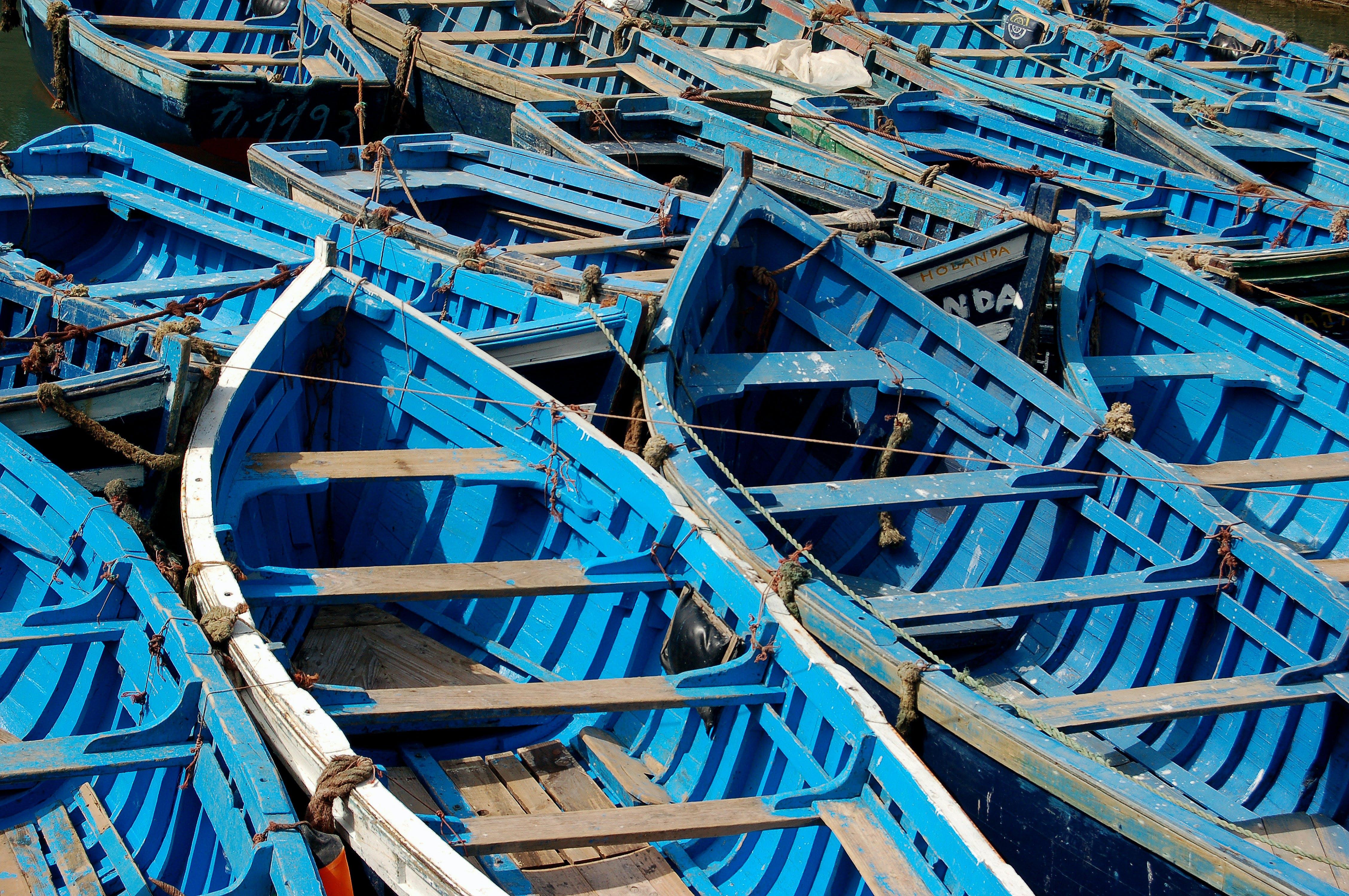Základová fotografie zdarma na téma člun, modrá, veslice