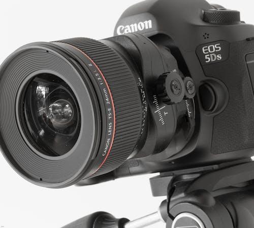 Free stock photo of 5 ds, camera, canon