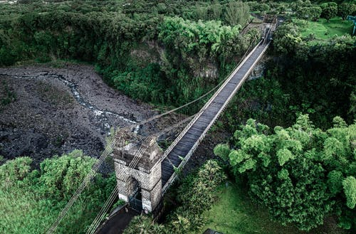 From above of narrow suspension aged bridge over narrow creek flowing among lush green trees growing in woodland in nature
