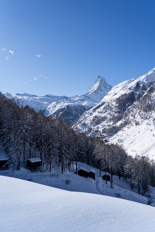 Small wooden cabins located on snowy slope near tall trees growing in woods against mountain ridge in countryside on winter day