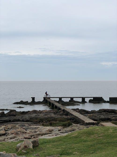 People Walking on Concrete Dock