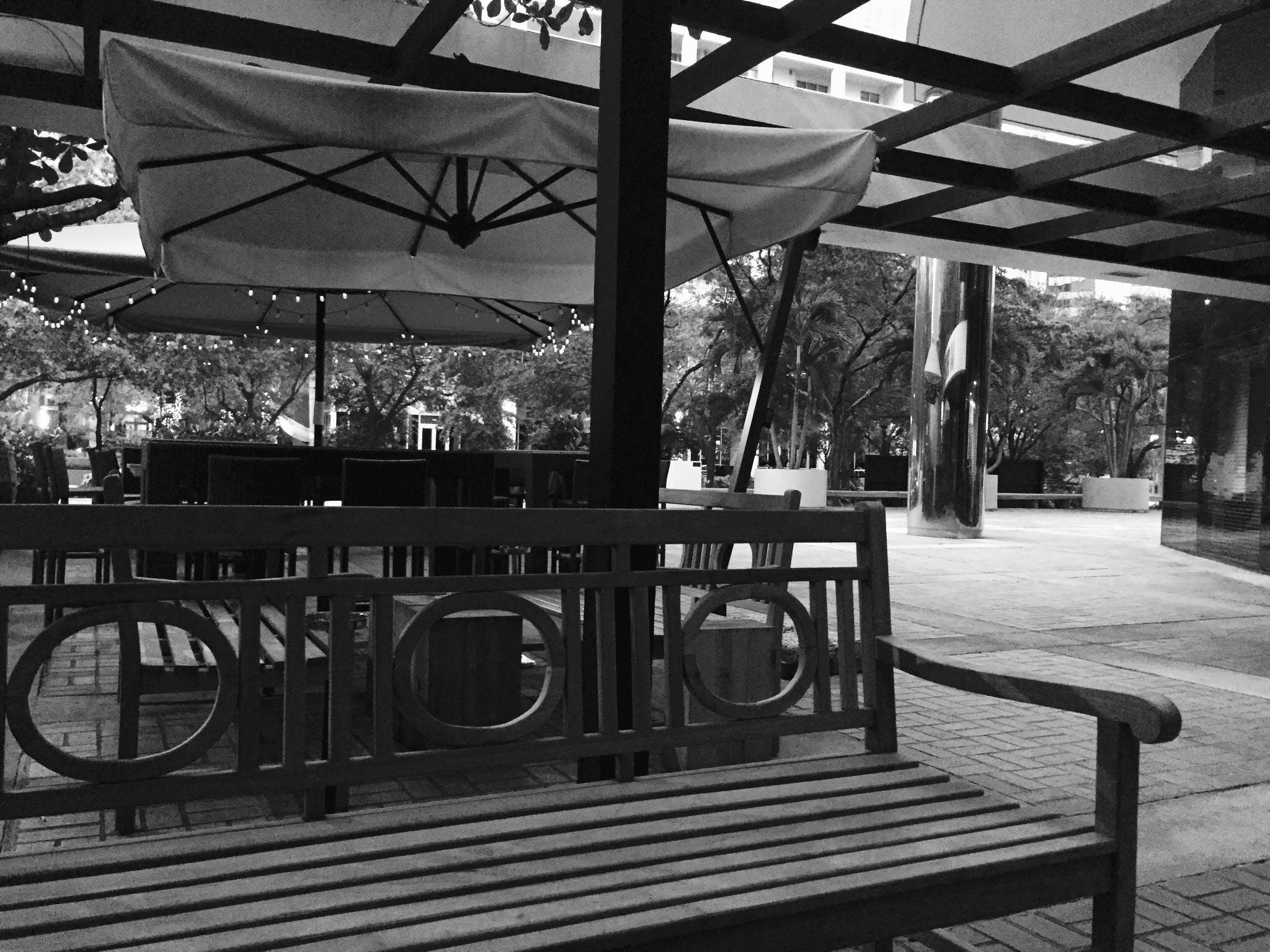 Free stock photo of miami florida