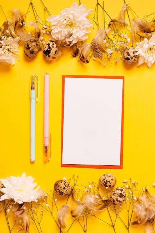 Gratis stockfoto met balpennen, bloemen, bovenaanzicht