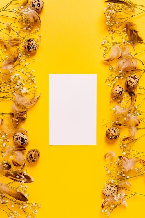 Gratis stockfoto met bloemen, bovenaanzicht, creditcard