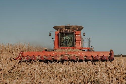 Δωρεάν στοκ φωτογραφιών με αγρόκτημα, αγροτικός, άχυρο