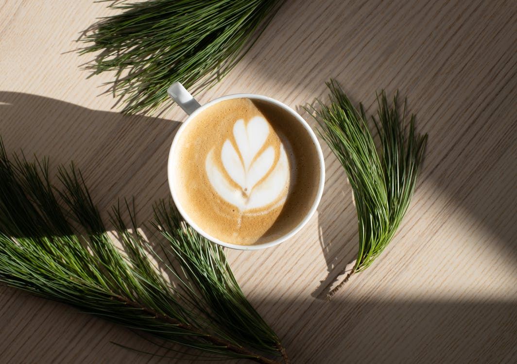 Top view of aromatic foamy cappuccino with latte art placed on wooden table near fresh green fir twigs