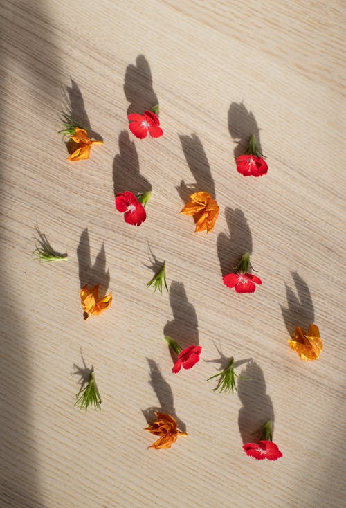 Top view of gentle red flowers and Cape gooseberries arranged on wooden table in sunlight